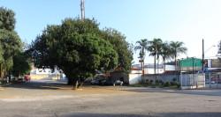 Estacionamento Portão 7. Foto: José Cordeiro/ SPTuris.